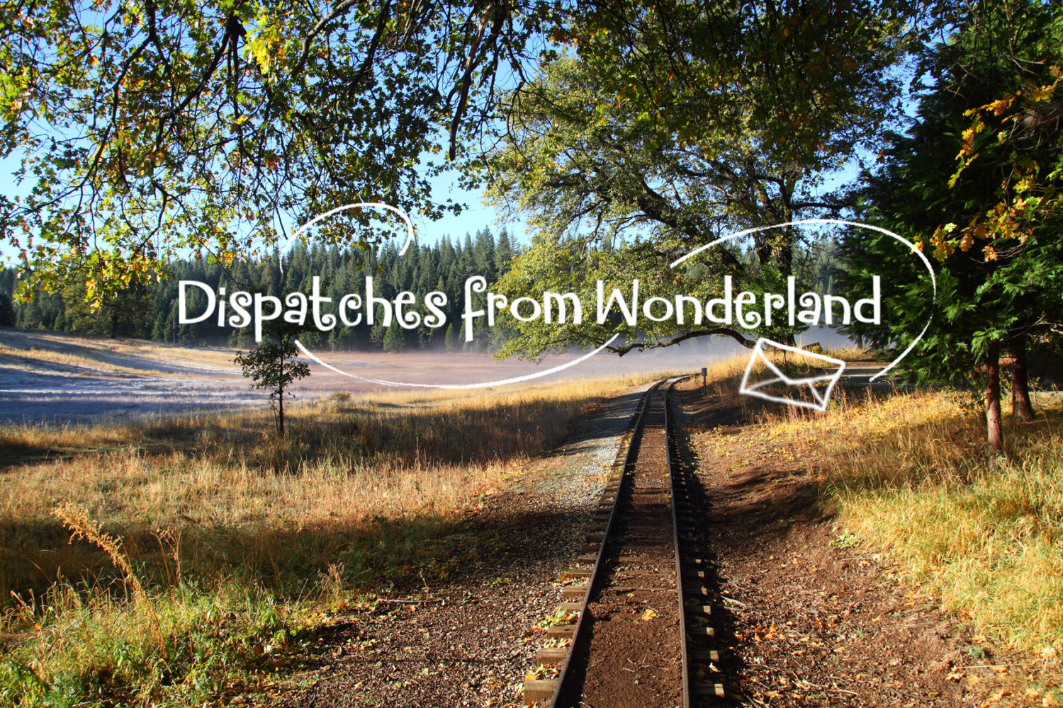 Dispatches From Wonderland